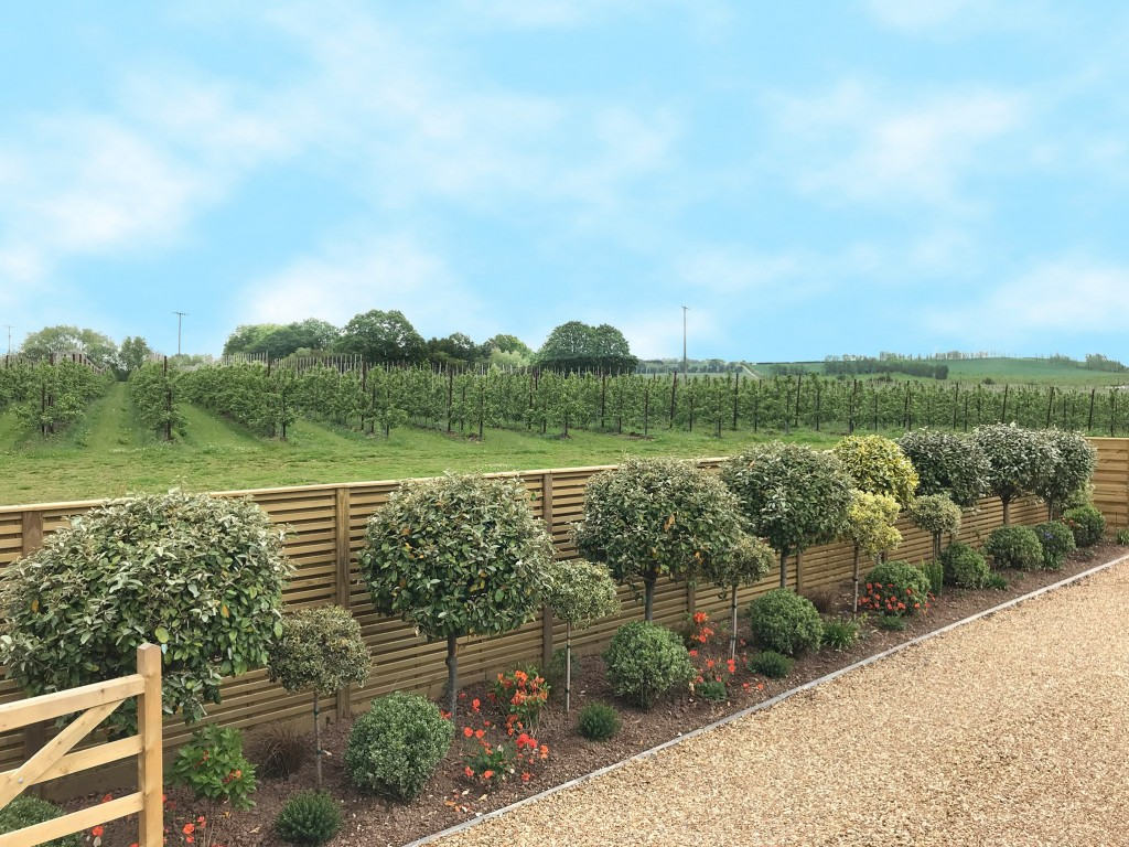 Which Jacksons fencing panels to choose?